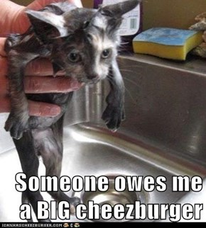 Someone owes me a BIG cheezburger