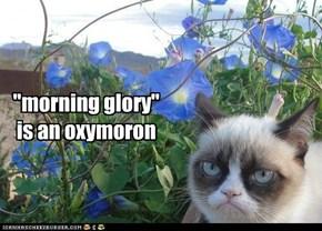 Unless it's the glory of sleeps