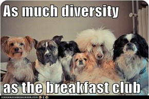 As much diversity  as the breakfast club