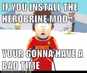 IF YOU INSTALL THE HEROBRINE MOD  YOUR GONNA HAVE A BAD TIME