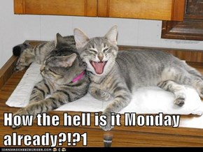 How the hell is it Monday already?!?1