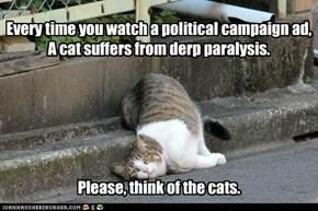 I'm a cat Fancier and I Approve This Message