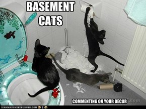 BASEMENT CATS