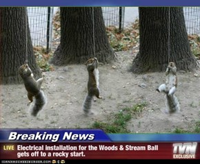 Breaking News - Electrical installation for the Woods & Stream Ball gets off to a rocky start.