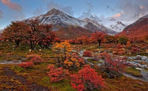 The Colors of Fall in Patagonia
