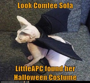 Look Comfee Sofa  LittleAPC found her Halloween Costume