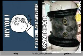 why Totally Looks Like god cat
