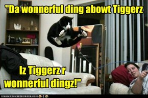 He's been bouncing and singing that Tigger song for two hours straight. Someone should maybe dial back his catnip consumption.