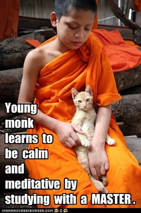 Young   monk   learns  to   be  calm   and   meditative  by   studying  with  a  MASTER .