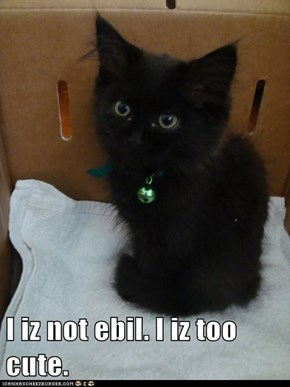 I iz not ebil. I iz too cute.