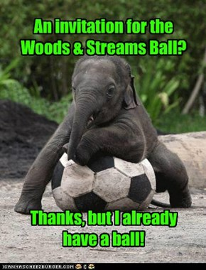 An invitation for the Woods & Streams Ball?        Thanks, but I already  have a ball!