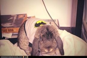 The Bunny That Gotham Deserves