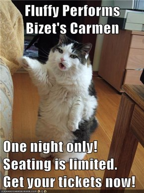 Fluffy Performs Bizet's Carmen  One night only!  Seating is limited.  Get your tickets now!