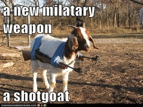 a new milatary weapon  a shotgoat