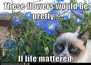 These flowers would be pretty...  If life mattered.