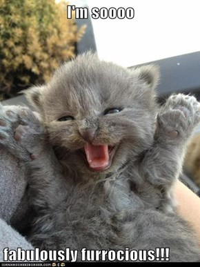 I'm soooo  fabulously furrocious!!!