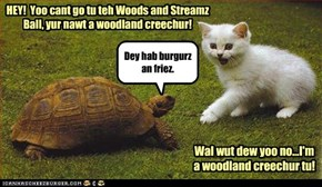 Woods And Streams Ball~ Kitteh Haz An Epiffany.