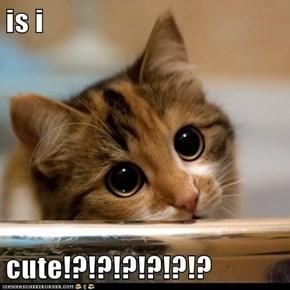 is i  cute!?!?!?!?!?!?