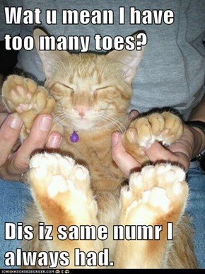 Wat u mean I have too many toes?  Dis iz same numr I always had.