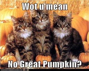 Wot u mean  No Great Pumpkin?