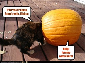 It'S Peter Punkin Eater's wife..ifinkso