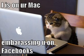 I is on ur Mac  embarassing u on Facebooks