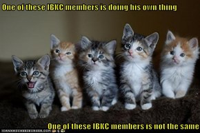 One of these IBKC members is doing his own thing  One of these IBKC members is not the same
