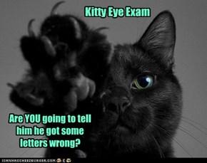 Kitty Eye Exam