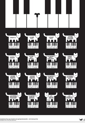 A Selection of Four-Paw Chords for All Aspiring Catmaninoffs, All in the Key of Cat