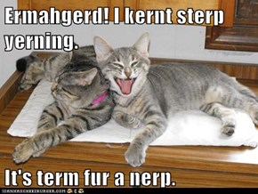 Ermahgerd! I kernt sterp yerning.  It's term fur a nerp.