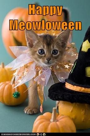 Happy Meowloween