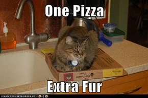 One Pizza  Extra Fur