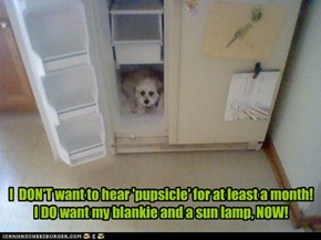 I  DON'T want to hear 'pupsicle' for at least a month! I DO want my blankie and a sun lamp, NOW!