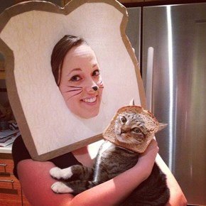 Bread Cat!