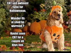 CAT sed awlmost tyme for  Hallowmean.  Wunder ifs ai shud be wurreed ?  Havint seen  CAT for a cupple ob days nao.