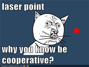 laser point  why you know be cooperative?