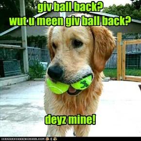 giv ball back? wut u meen giv ball back?       deyz mine!