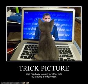 TRICK PICTURE