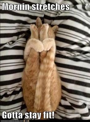 Mornin stretches  Gotta stay fit!