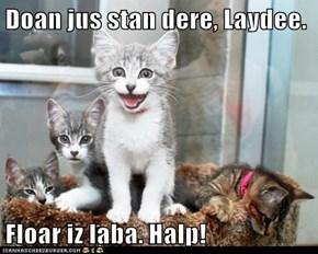 Doan jus stan dere, Laydee.  Floar iz laba. Halp!