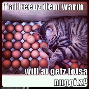 If ai keepz dem warm  will ai getz lotsa nuggitz?
