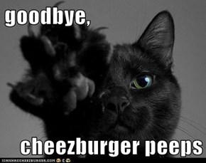 goodbye,  cheezburger peeps