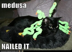 medusa  NAILED IT