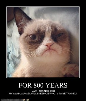 FOR 800 YEARS