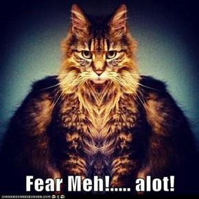 Fear Meh!..... alot!