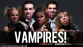 Seven Misconceptions about Vampires To Keep In Mind as You Kill Them