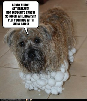 SORRY KIDDO! GET DRESSED!  NOT ENOUGH TO CANCEL SCHOOL! I WILL HOWEVER PELT YOUR BUS WITH SNOW BALLS!
