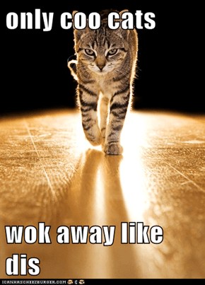 only coo cats  wok away like dis