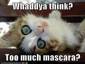 Whaddya think?  Too much mascara?