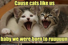 Cause cats like us baby we were born to ruuuuun